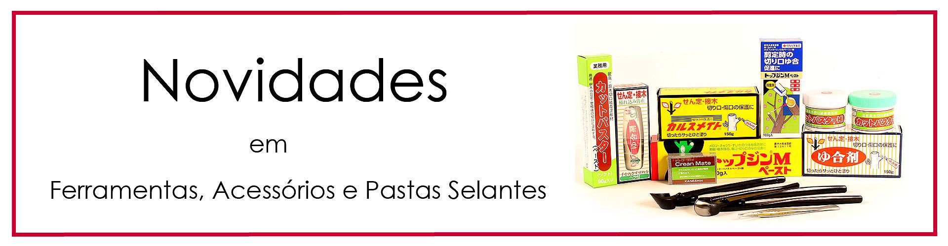 Banner Pasta